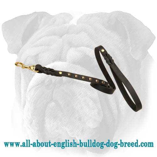 Fantastic Leather English Bulldog Leash with Brass Studs