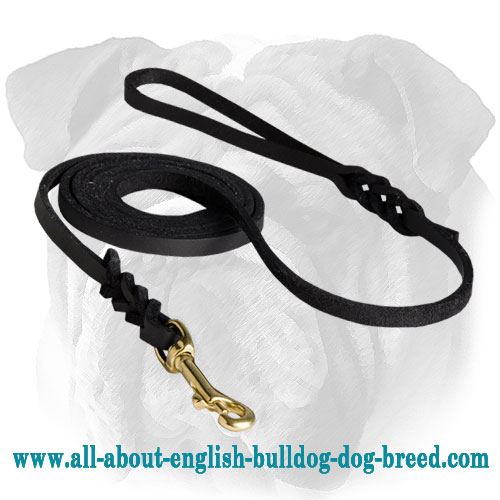 Soft Premium Leather Leash with Braided Ends for English Bulldog