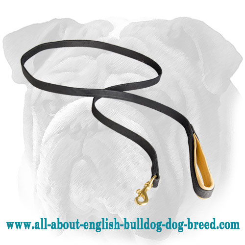 Long Leather Lead For English Bulldog Breed with Nappa Padded Handle