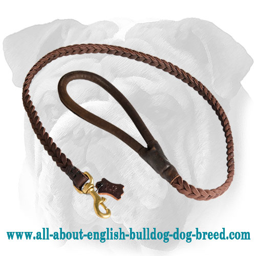 Deluxe Full-Braided Leash for English Bulldog Breed