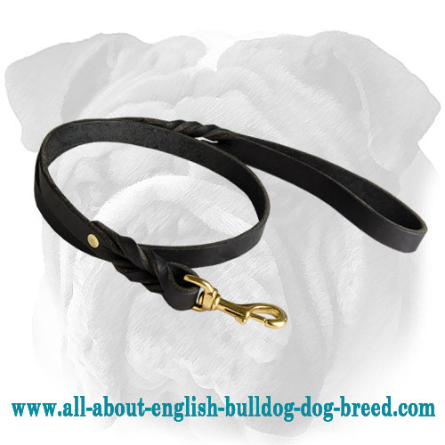English Bulldog Leather Leash with Braids