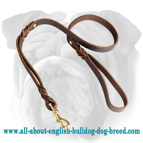 Double Handle Leather Leash for English Bulldog