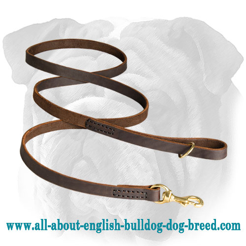 Premium Quality Genuine Leather Leash for English Bulldog