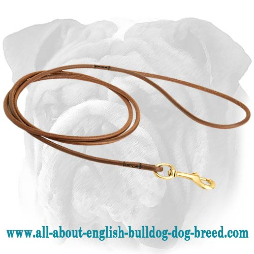 Refined Leather English Bulldog Leash for Dog Shows