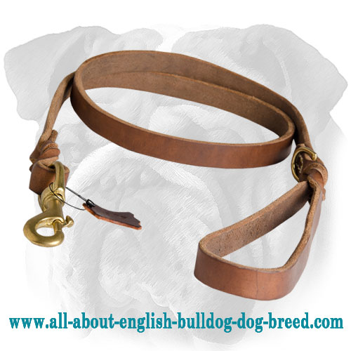 Latigo Braided Leather Waist Lead for English Bulldog