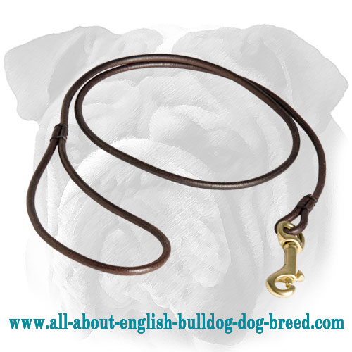 Marvelous Leather English Bulldog Leash for Dog Shows