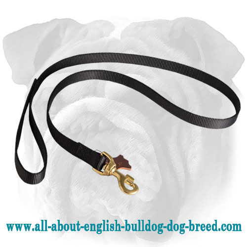 High Quality Feature-Rich Nylon English Bulldog Leash