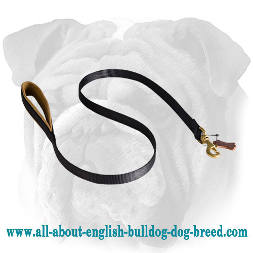 Quality Nylon English Bulldog Leash with Soft Padded Handle