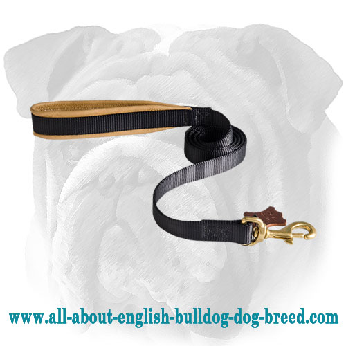 Reliable Nylon English Bulldog Leash - Super Comfortable Lead