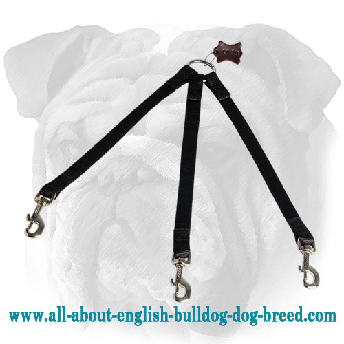 Stitched Triple English Bulldog Leash for Walking 3 Dogs in Any Weather Condition