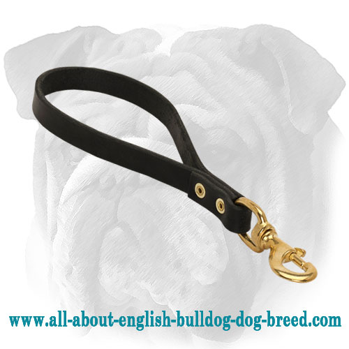 Short English Bulldog Leash with Support Material on The Handle