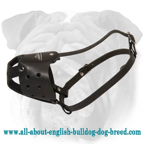 Genuine Leather Dog Muzzle for English Bulldog