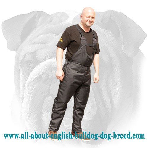 Nylon Scratch Pants for English Bulldog Training