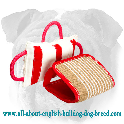 High Quality Jute English Bulldog Pillow