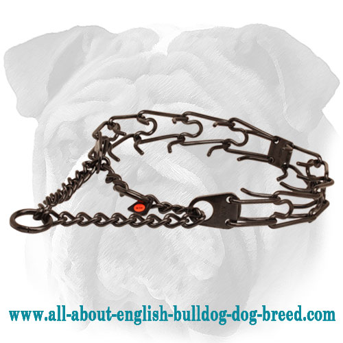 Steel - Antique Copper Plated English Bulldog Herm Sprenger Prong Collar - 1/6 inch (3.90 mm)