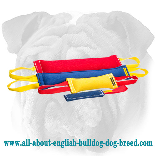 Professional French Linen English Bulldog Set of Bite Tugs