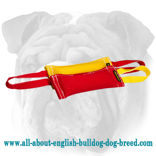 French Linen Bite Tugs in One Set for English Bulldog Puppy Training