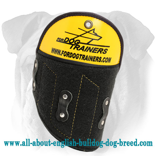 Easy Removable English Bulldog Shoulder Protector for Advanced Training