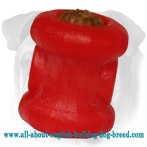 Medium Foam Fire Plug Chewing Toy for English Bulldog