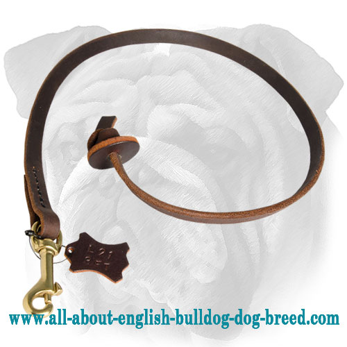 Training Leather English Bulldog Leash with Circle Handle