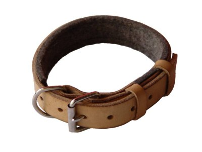 Padded Leather dog collar with thick felt for English bulldog