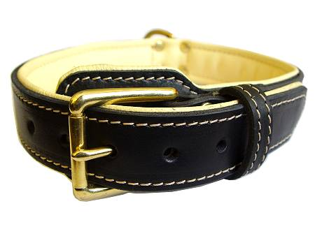 leather dog collar-padded dog collar for all dog breeds