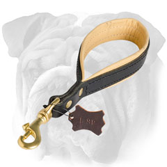 Leather Nappa padded English Bulldog leash