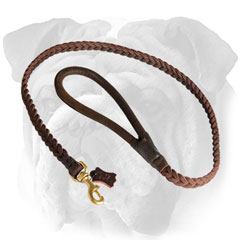 Stylish braided leather English Bulldog leash