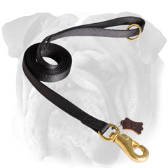 Nylon leash for English Bulldog resistant to water