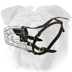 Amazing Wire Basket English Bulldog Muzzle
