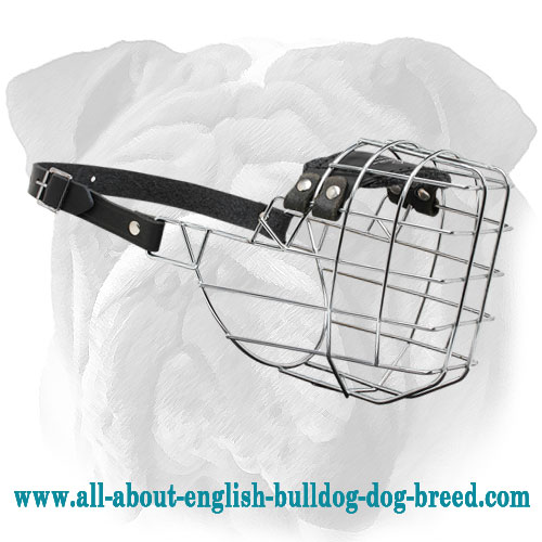 Comfortable Wire Basket Dog Muzzle for English Bulldog