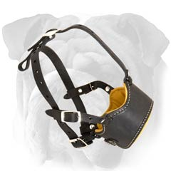 English Bulldog muzzle Nappa padded inside