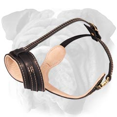 elegant leather muzzle