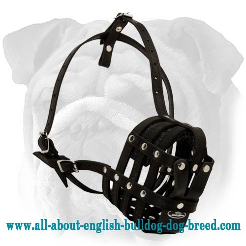 Black Leather Canine Muzzle