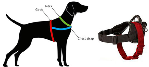 how to measure harness h6